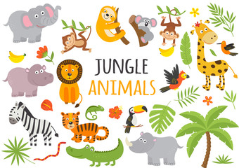 set of isolated jungle animals and tropical plants  -  vector illustration, eps