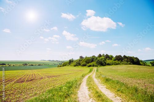 Fototapety, obrazy: Rural scene white fluffy clouds.