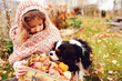 canvas print picture happy kid girl with basket of apples  playing with her cavalier king charles spaniel dog in autumn, walking outdoor in sunny garden