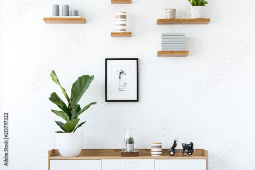Cuadros en Lienzo  Plant on wooden cupboard in minimal flat interior with poster and shelves on white wall