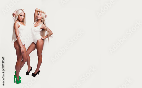 31f52ed4d4 Two Blondes on a white background.Sexy blondes.Girls on a white background  in white bodysuit.Isolated on white.Your text here