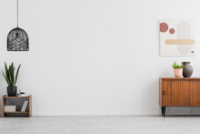 Retro, Wooden Cabinet And A Painting In An Empty Living Room Interior With White Walls And Copy Space Place For A Sofa. Real Photo.