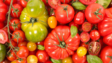 Assorted Of Tomatoes