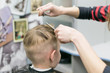 A little boy in a hairdresser. A child is given a haircut on his head.