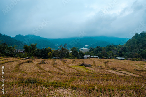 Foto op Aluminium Pool high mountains peaks range clouds in fog scenery landscape national park view outdoor at Chiang Rai, Chiang Mai Province, Thailand