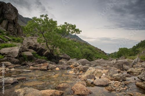Foto op Aluminium Cappuccino Welsh Landscape