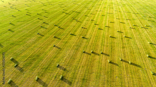 Photo Alfalfa Field with Small Square Bales at Dusk