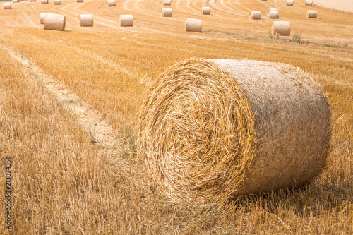 Fotografía Big Hay Bale and small ones in the Background