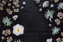 Matilija Poppy With Quartz And Native Plants