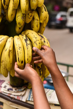 Hand Picking A Banana