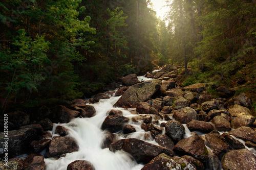 In de dag Zwart Beautiful mountain river Slovakia Beautiful landscape mountain river sunset