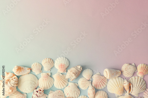 Fotografia, Obraz Creative seashell pattern on gradient pastel pink and blue background