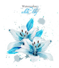 Beautiful Blue Lily Flower Vector. Delicate Floral Decor. Paint Splash