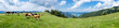 canvas print picture - Panorama Alm im Salzkammergut