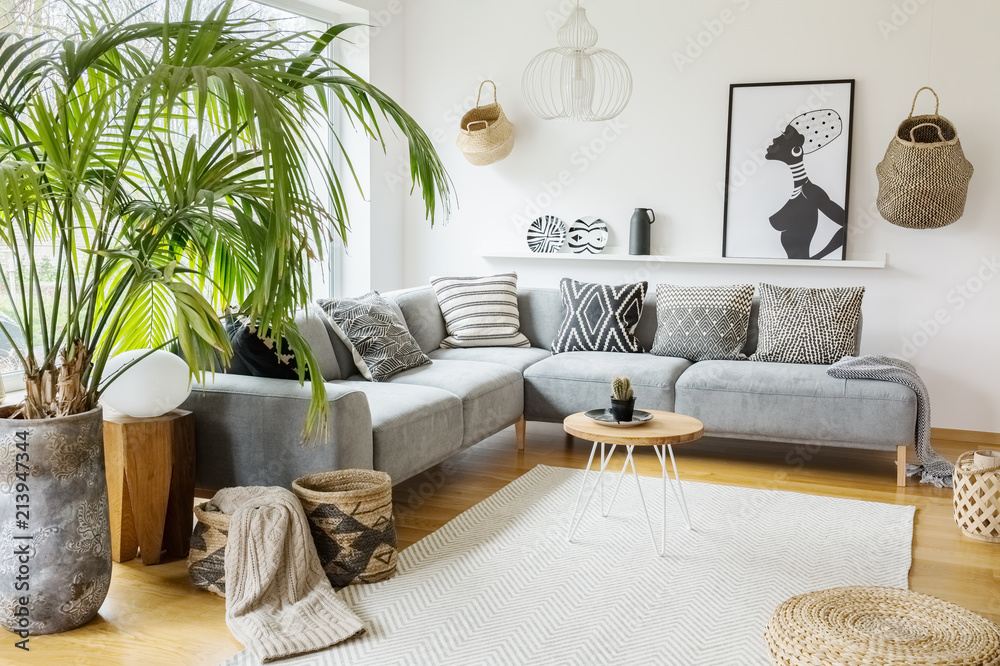 Plant next to grey corner sofa in african living room ...