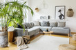canvas print picture - Plant next to grey corner sofa in african living room interior with poster and pouf. Real photo