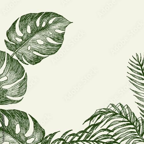 recznie-rysowane-galezie-i-liscie-roslin-tropikalnych-zielona-monstera-i-palma-pozostawia-wokol-miejsca-na-tekst-wysoka-szczegolowa-ilustracja-botaniczna