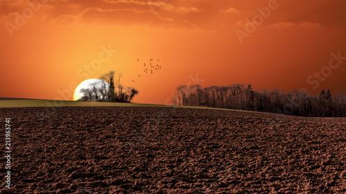 Cadres-photo bureau Brique Coucher de soleil dans la campagne
