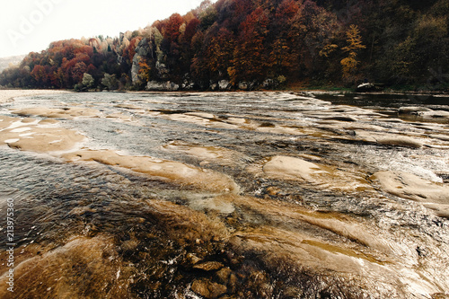 Keuken foto achterwand Grijze traf. beautiful amazing autumn woods and river in sunlight, breathtaking landscapes in ukrainian mountains, national park