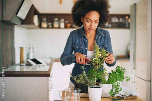 Stampa su Tela Beautiful mixed race woman gardening.
