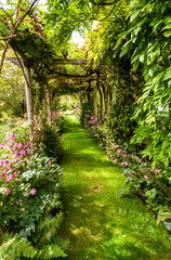 FototapetaA grassed path under a vine-covered pergola-archway makes a verdant mysterious shady avenue. Flower beds and ferns adorn the sides.