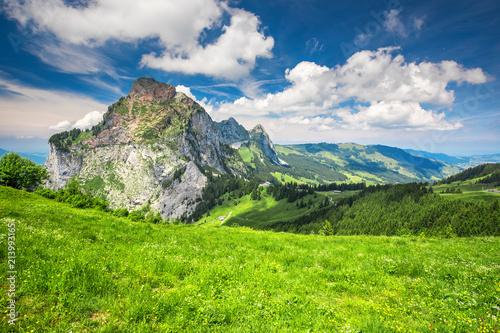 Beautiful summer landscape of Switzerland with Grosser Mythen mountain and green meadows, Ibergeregg, Switzerland, Europe