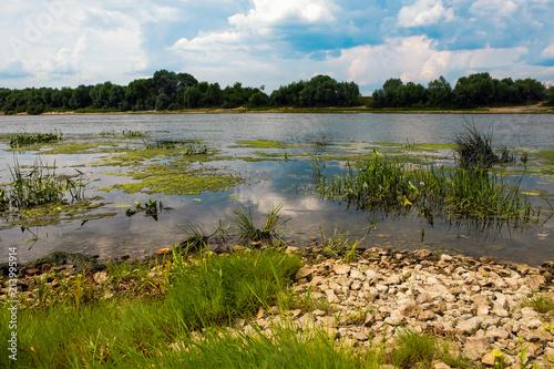 Foto op Canvas Rivier landscape with river