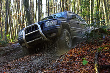 Motor Racing In Autumn Forest....