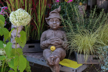 Garden Gnome Among Flowers