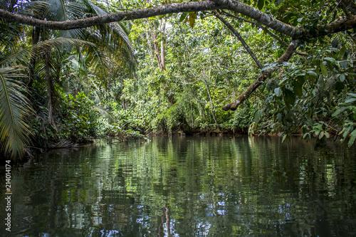 Fotografie, Obraz  Punta Uva Canal and Jungle in Costa Rica