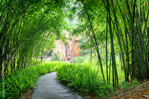 In de dag Bamboo Shady stone walkway among ferns and green bamboo trees
