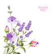 Label with lavender. Bunch of lavender flowers on a white background. Botanical illustration.