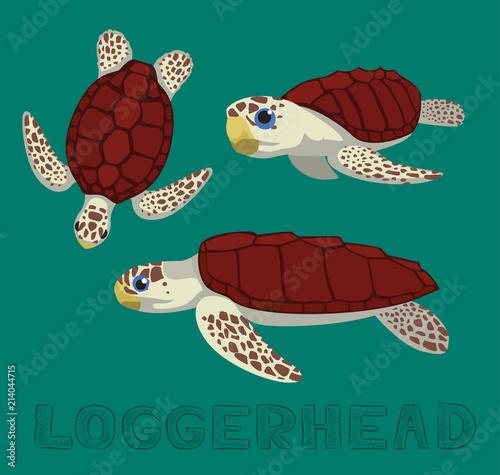 Fototapeta premium Ilustracja wektorowa kreskówka karetta żółwia morskiego