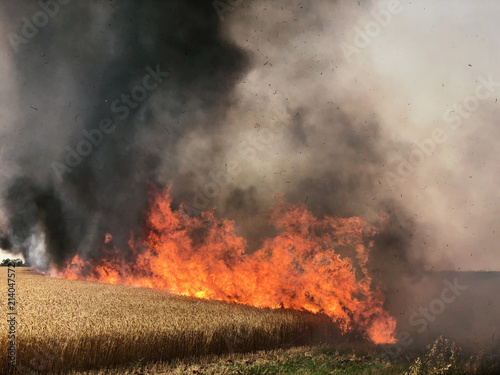 Fotografiet  Fires in Israel that caused from burning kites and balloons that sent from the Gaza strip to Israel by the terror organisation Hamas