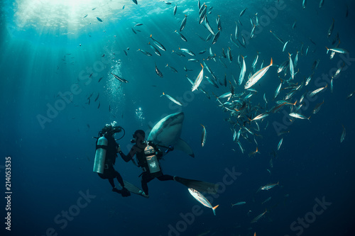Extreme shot with great white shark underwater Wallpaper Mural
