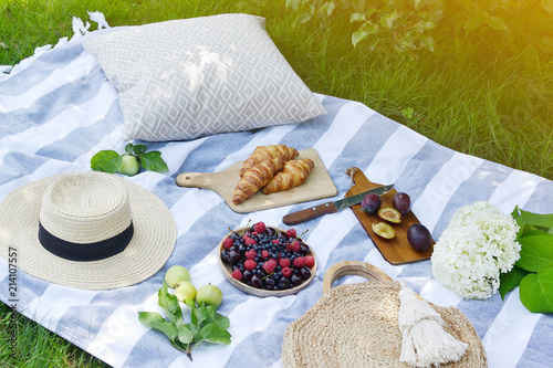 Spoed Foto op Canvas Picknick Picnic Instagram Style Food Fruit Bakery Berries Green Grass Summer Time Rest Background Sunlight