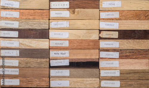 Fotografie, Obraz  sample of different species of tropical hardwood that grow in Indonesia