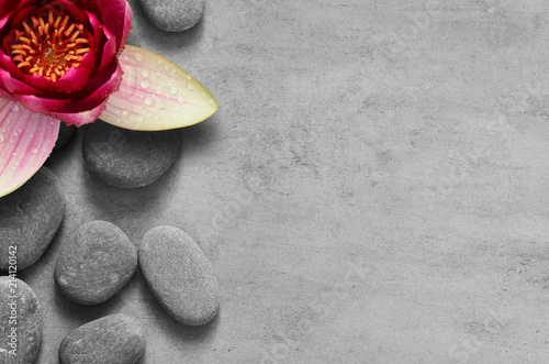 flower-lotus-and-stone-zen-spa-on-grey-background