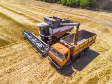 Combine Harvester Harvest Wheat On The Field. Loading In A Truck. Aerial View.