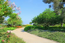 Park Ramat Hanadiv, Memorial Gardens Of Baron Edmond De Rothschild, Zichron Yaakov, Israel