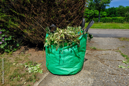 Valokuva  Green bag full of garden waste.