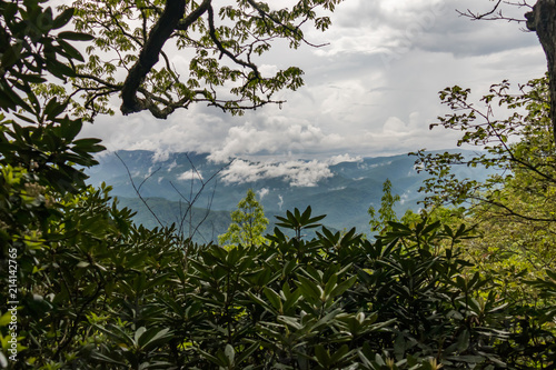 Fotografie, Obraz  Scenic view of mountains seen from Cataloochee Divide Trail