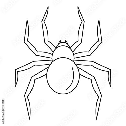 Photo  Black widow spider icon