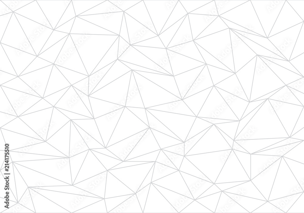Fototapeta Abstract gray line triangle polygon on white background vector illustration.