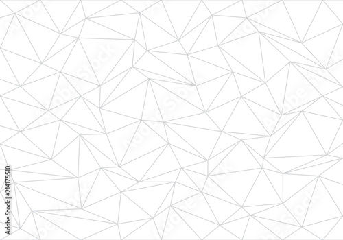 Abstract gray line triangle polygon on white background vector illustration Canvas Print