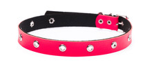 Red Leather Dog Collar Isolate...