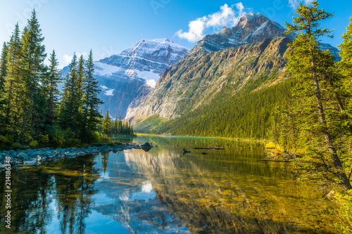 Canvastavla Morning Light at Cavell Lake, Rocky Mountains, Canada