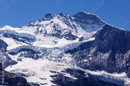Fototapeta Jungfrau and Glacier obraz na płótnie