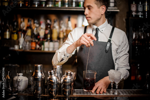 Fotografie, Obraz  Young barman stirring fresh summer alcoholic cocktail in glass