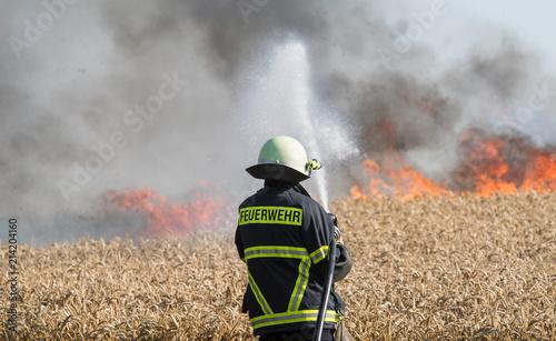 Fototapeta Feldbrand, brennendes Weizenfeld